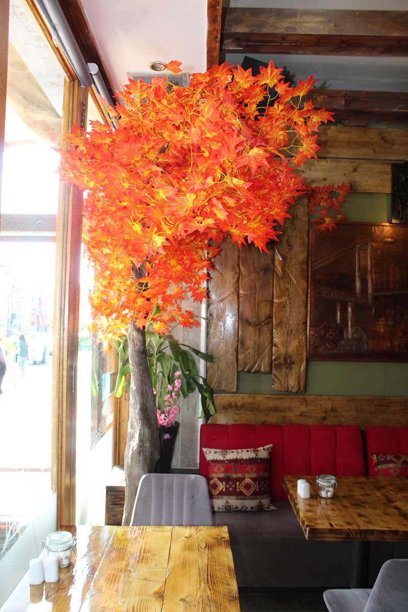 Ezo Cafe Lounge  Bristol